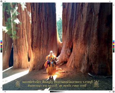 Luang Por Visit 2015 1861